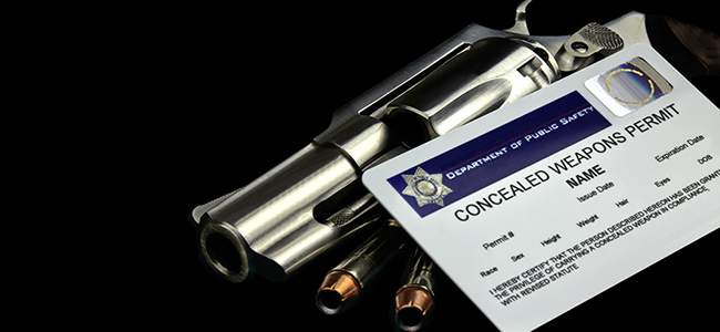 Firearm Owners: What to Do if Your Licence Has Expired