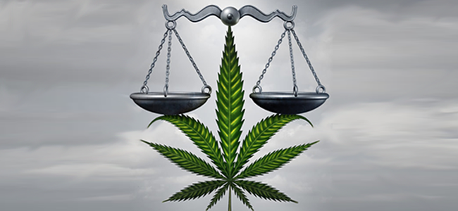 Dagga – Just How Legal is it Now?